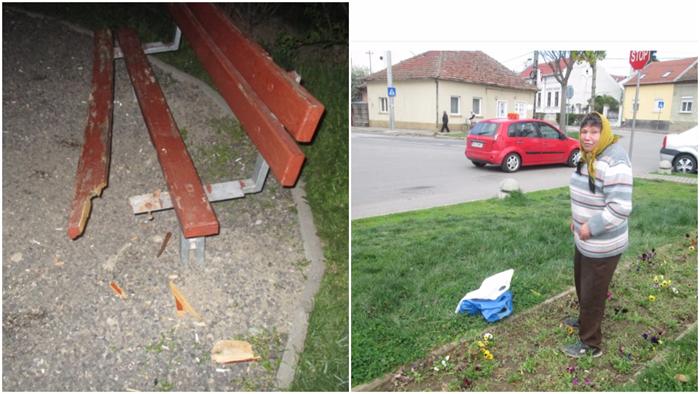 Bancă distrusă și flori smulse în parcurile din Satu Mare (Foto)