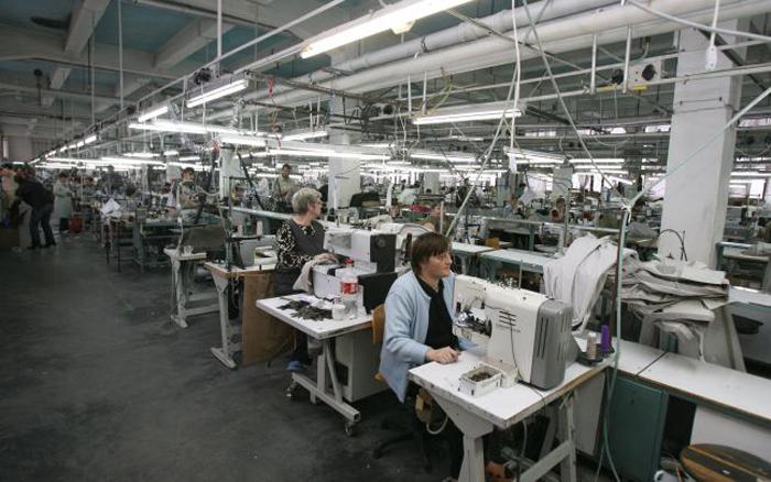 Piața muncii în județul Satu Mare – la zi
