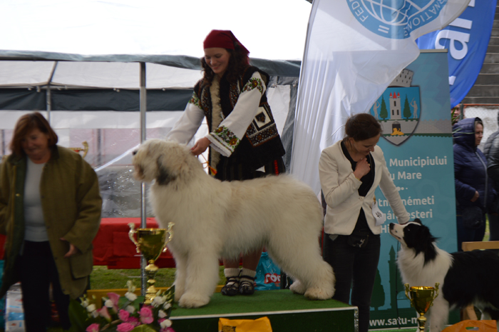 """Parada costumelor populare"" la Dog Show Satu Mare (Foto)"