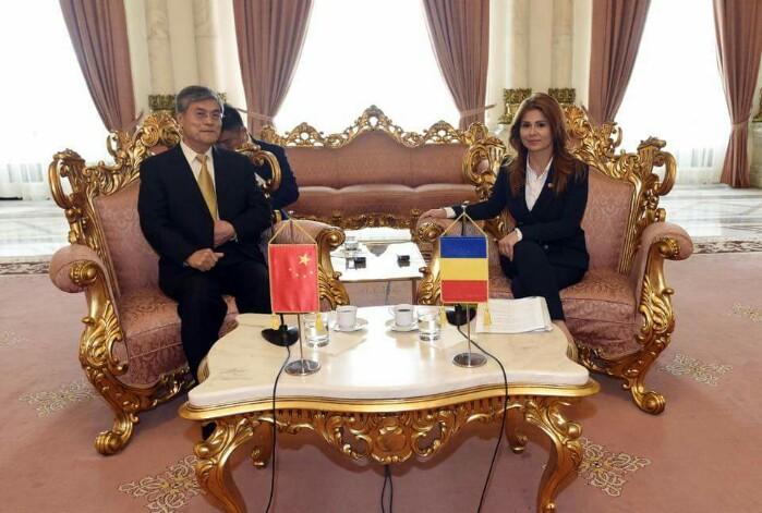 Delegație din China, primită de secretarul Biroului Permanent al Camerei Deputaților Ioana Bran (Foto)