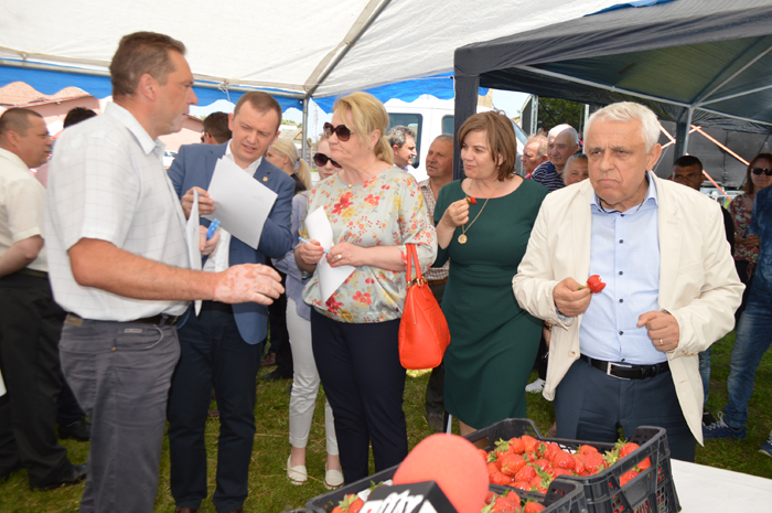 Ministrul Agriculturii a participat la Festivalul Căpșunilor de la Halmeu (Galerie foto&video)