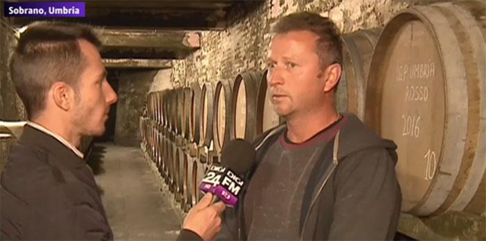 Un vin italian cu inimă românească. Cine este sătmăreanul care îl produce