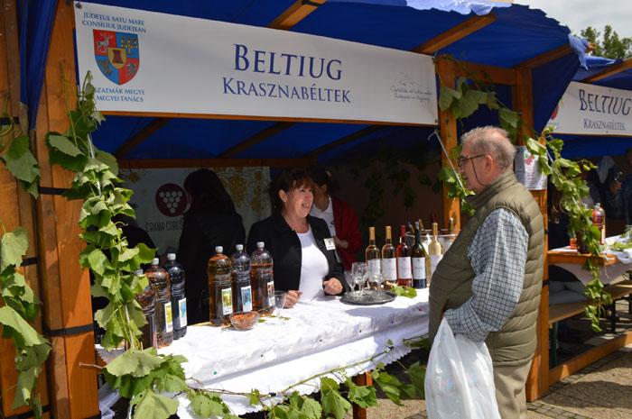 S-a dat startul Festivalului Vinului Sătmărean (Foto&video)