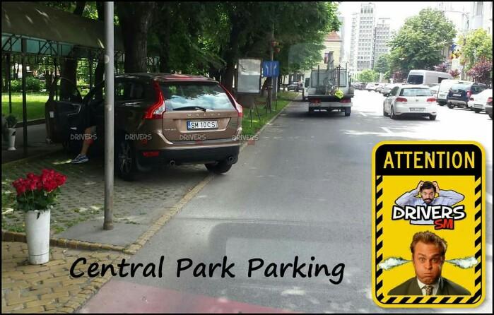 Și-a parcat mașina la umbră … sub copacii din parc. Polițiștii ce păzesc ? (Foto)