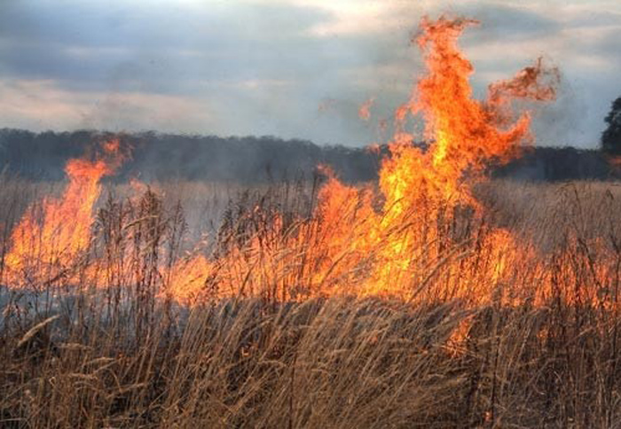 Măsuri de prevenire a incendiilor pe timp de caniculă