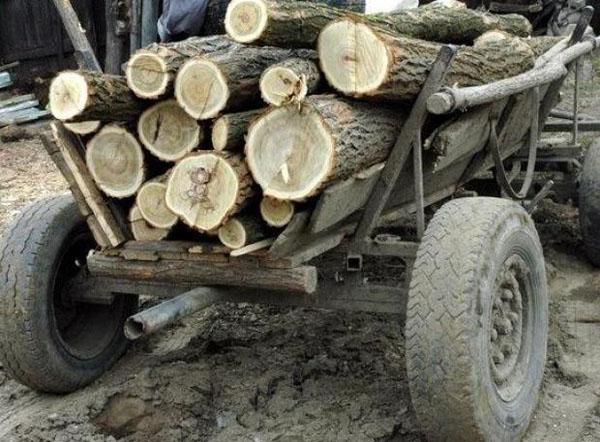 I-au confiscat lemnele din caruta