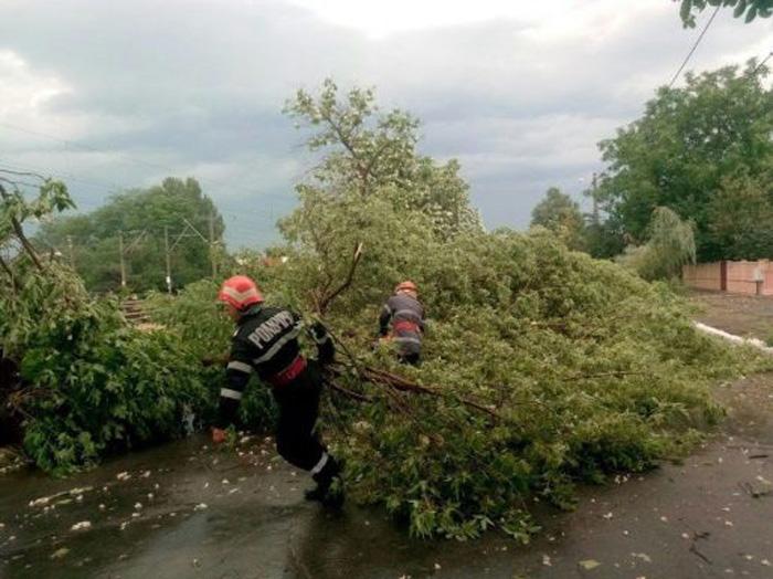 Copaci doborâți la pământ de vijelie. Pompierii au intervenit de urgență