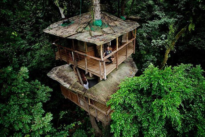 Căsuțe spectaculoase construite în copaci. Vezi cum arată