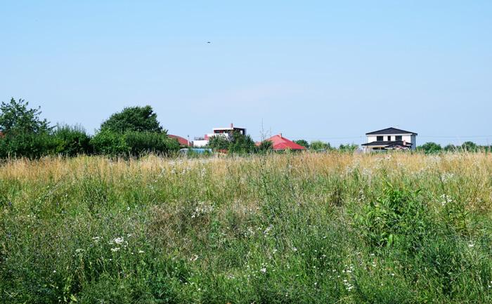 Primăria Satu Mare vrea să stârpească iarba pârloagelor