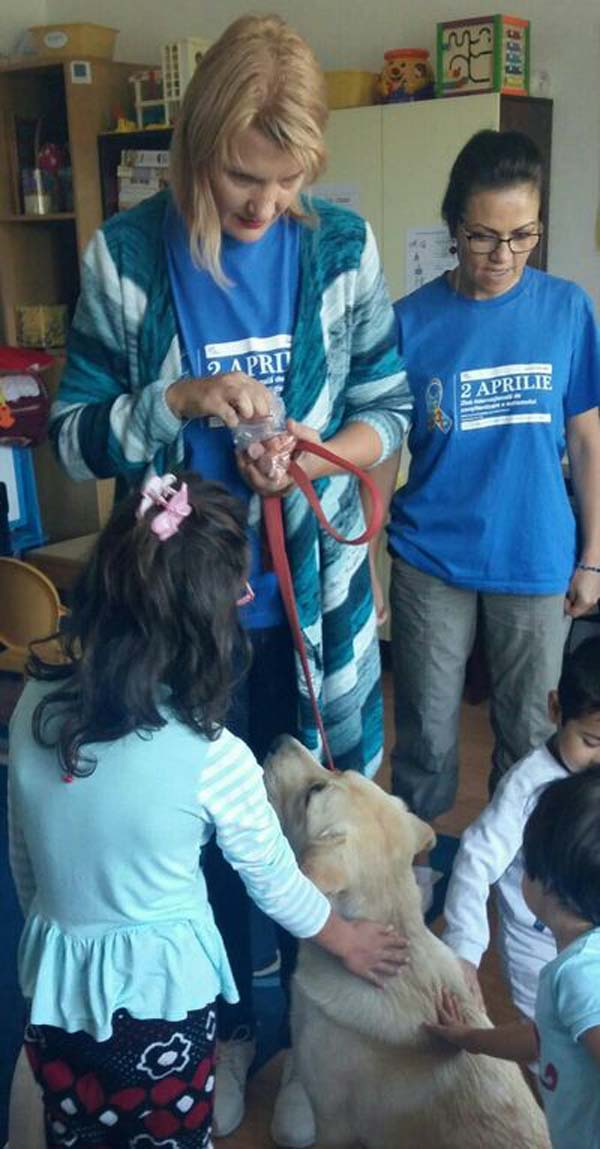 """Doi labradori """"școliți"""" la Satu Mare, folosiți la Vaslui în terapia copiilor cu nevoi speciale"""