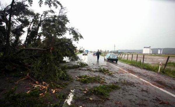 Drumuri blocate din cauza arborilor doborâți de furtună