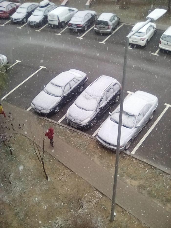Ninge în Negrești-Oaș (Foto)