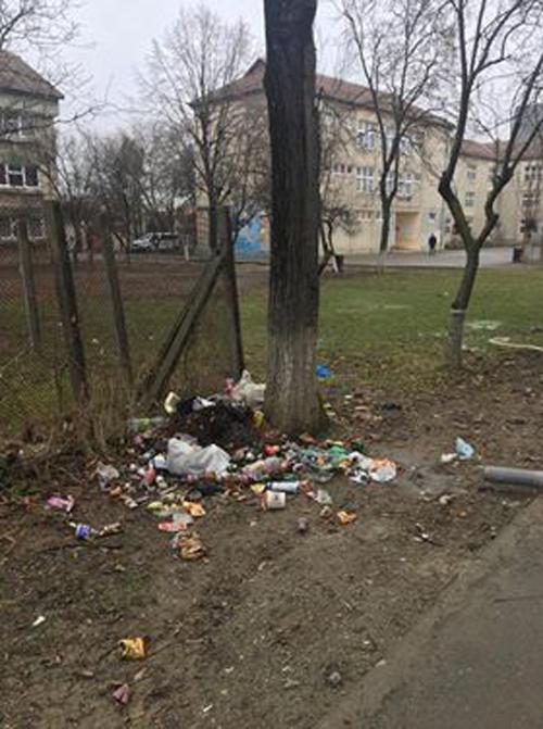 Gunoaie aruncate lângă un liceu din Satu Mare (Foto)