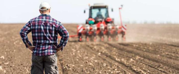 APIA primește cereri de ajutor pentru culturile din toamna, afectate de secetă
