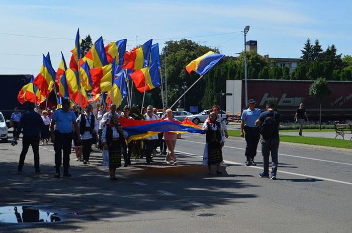 Protest la Carei. Marul discordiei, amplasarea unui catarg (Foto)