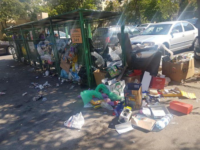 Priveliste de duminica: Munti de gunoaie si miros greu de suportat (Foto)