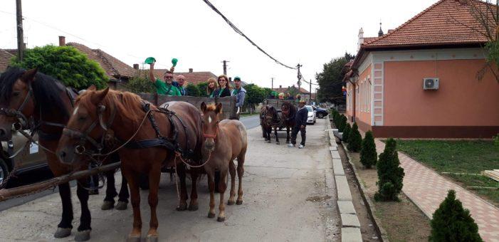 Proiect de mediu, derulat la Satu Mare (Foto)
