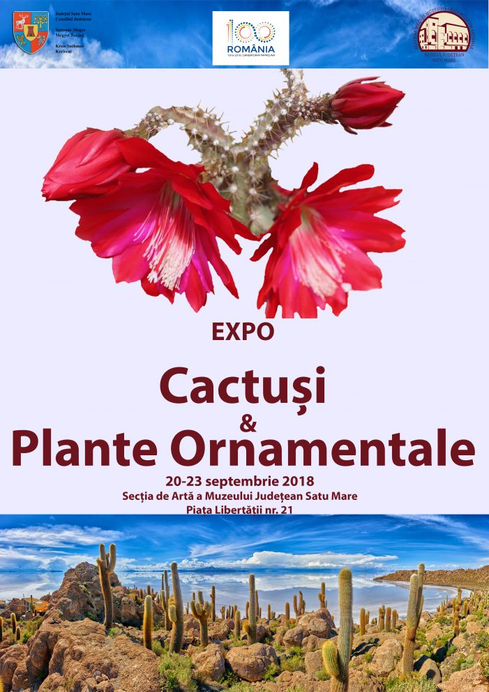 Cactusi, plante ornamentale si tombola la Muzeul de Arta