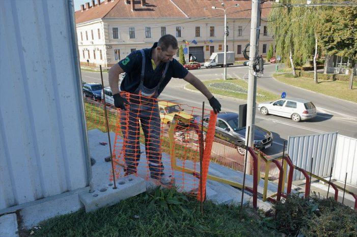 Scarile de pe dig, intra in reabilitare (Foto)