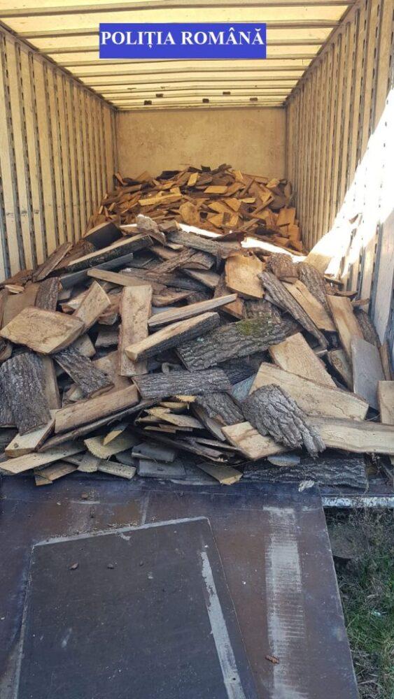 Lovitura pentru mafia lemnului. Perchezitii in judet
