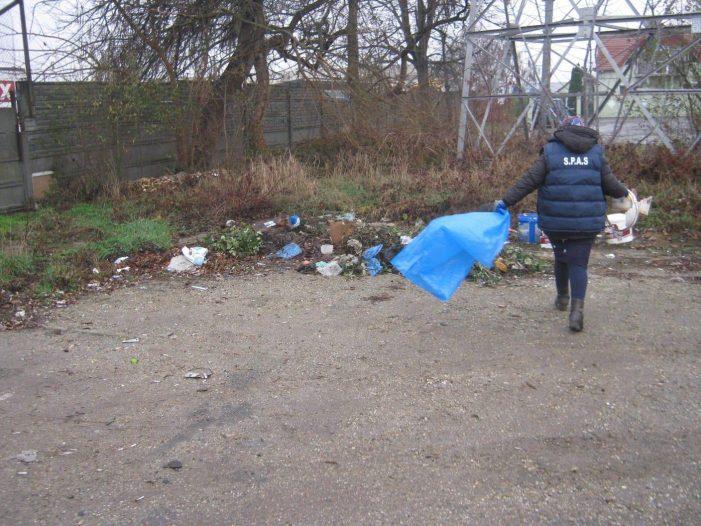 Asistații sociali au fost scosi la muncă în oraș (Foto)