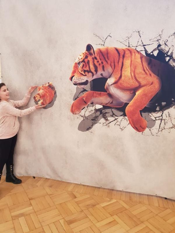 S-a deschis Muzeul iluziilor la Satu Mare (Foto)