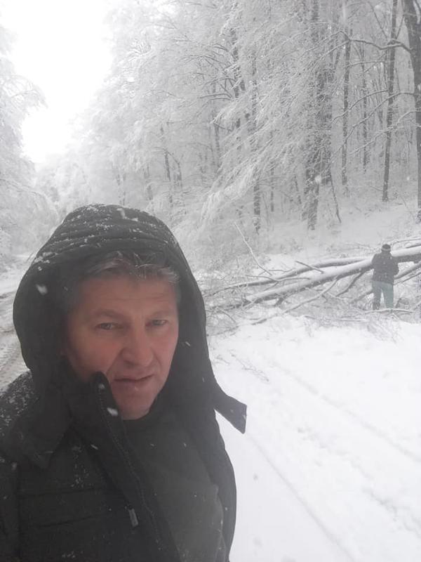 Copaci rupti si in Calinesti-Oas. Ce spune spune primarul (Foto)