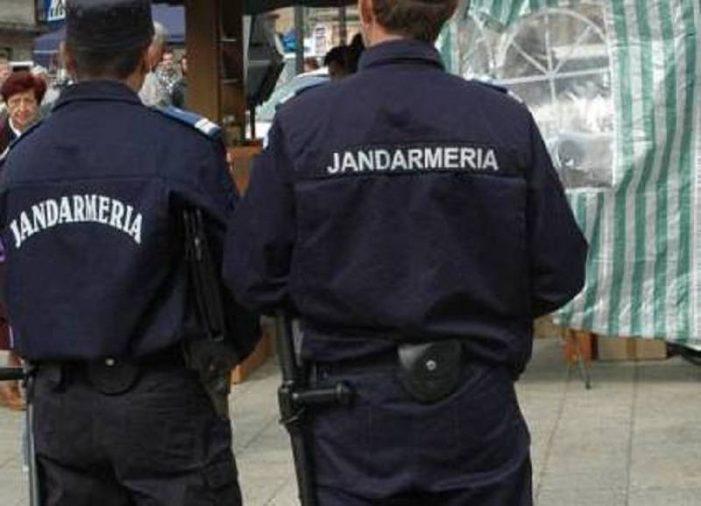 Incidenta Covid în municipiul Satu Mare a depasit 3 la mie ! Jandarmii se pregătesc pentru scenariul roșu !