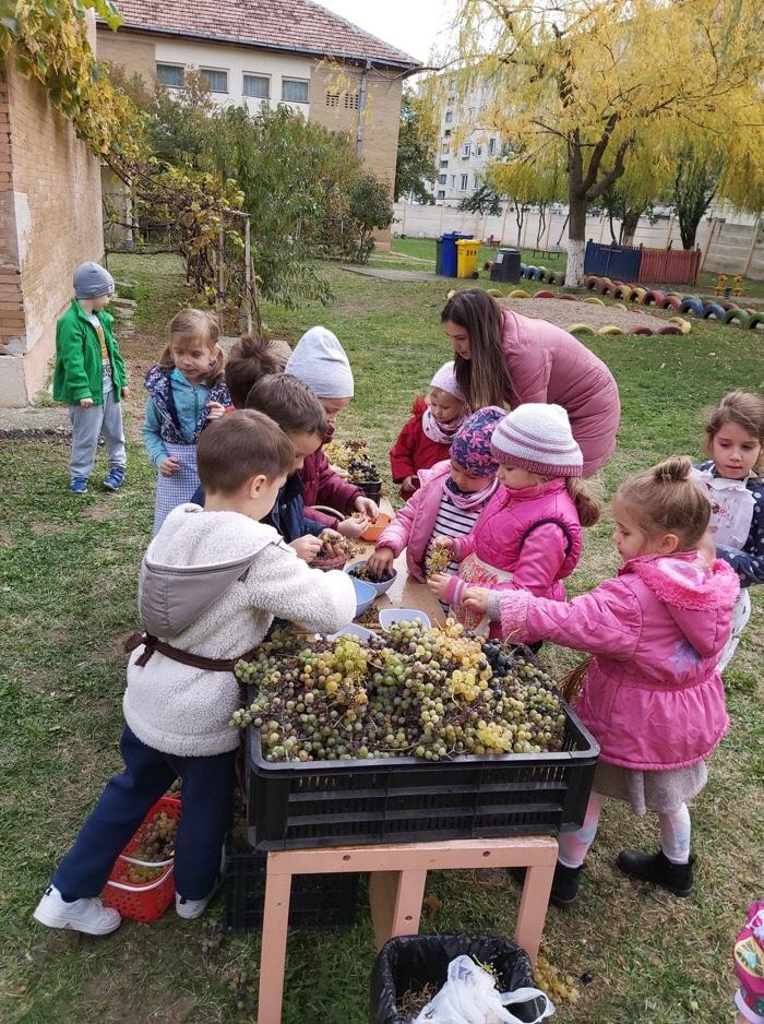 Au învățat jucându-se! Activități inedite la o grădiniță din oraș. (FOTO)
