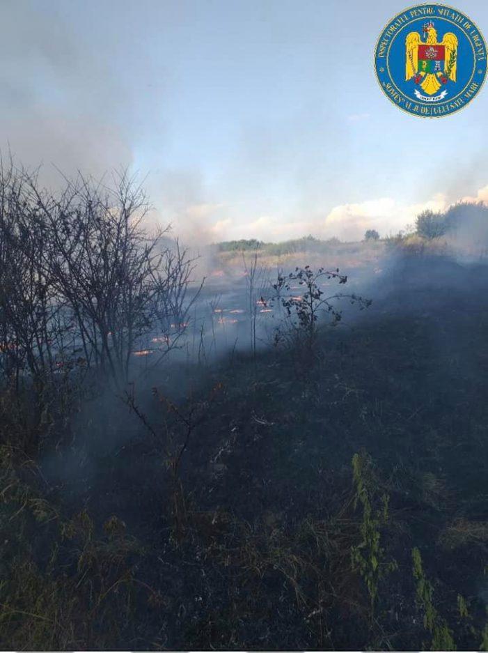 Sute de metri patrati de vegetație uscata, prapadite de foc (Foto)