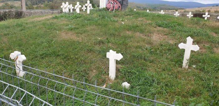 Cimitir vandalizat în judetul Satu Mare (Foto)