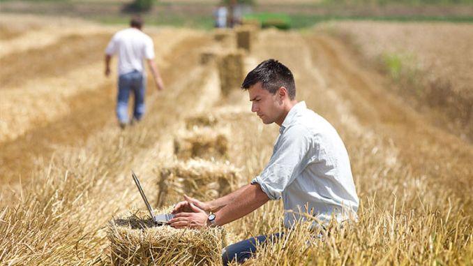 Sprijin pentru tinerii fermieri