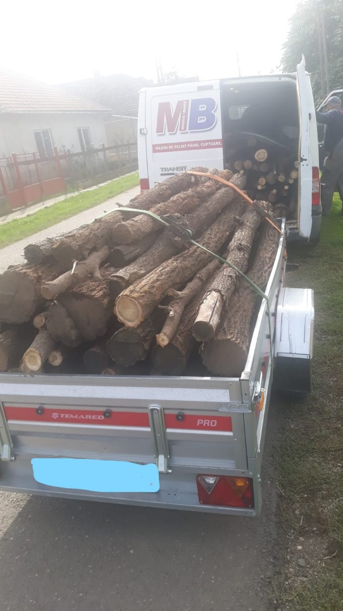 Transporta lemne cu camioneta. Nu avea acte (Foto)