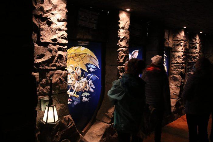 Expozitia cu lilieci și-a deschis porțile (Foto)