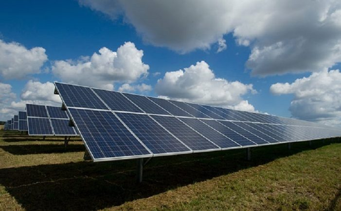 Parc solar la Satu Mare. Investitie de 70 de milioane de euro