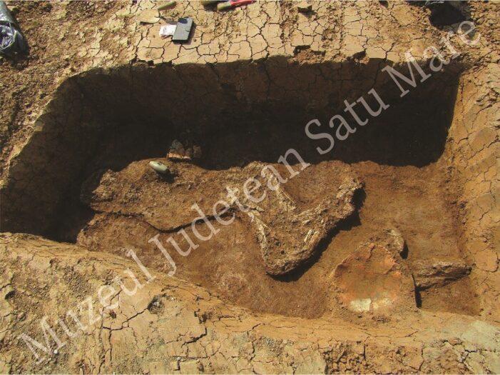 Structuri de arhitectură monumentală vechi de peste 6500 ani descoperite la Moftinu Mare (Foto)