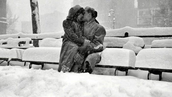 Situaţie hilară în Ploieşti. Doi tineri au luat amenda pentru ca s-au sărutat în parc … fără masca
