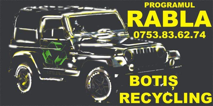 Botis Recycling, firma care va ajuta sa aveți mașina mult visata. Ce aveți de făcut ?