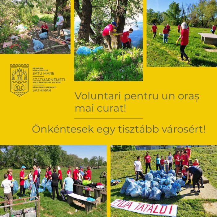 Voluntari pentru un oraș mai curat !