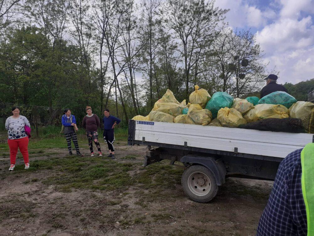 Start la curățenie în județul Satu Mare … cu asistații sociali (Foto)