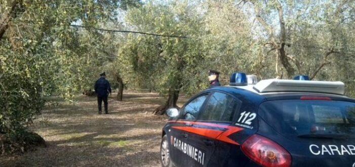 Român de 46 de ani, ucis într-o fermă abandonată din Italia