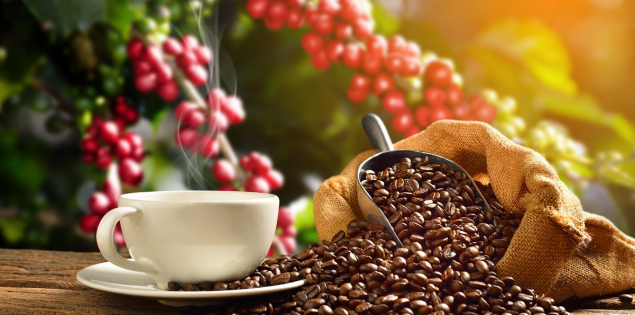 17 curiozitati despre cafea