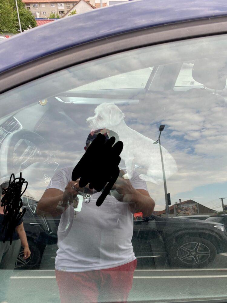 """Caine """"uitat"""" in masina, pe vreme de canicula (Foto)"""