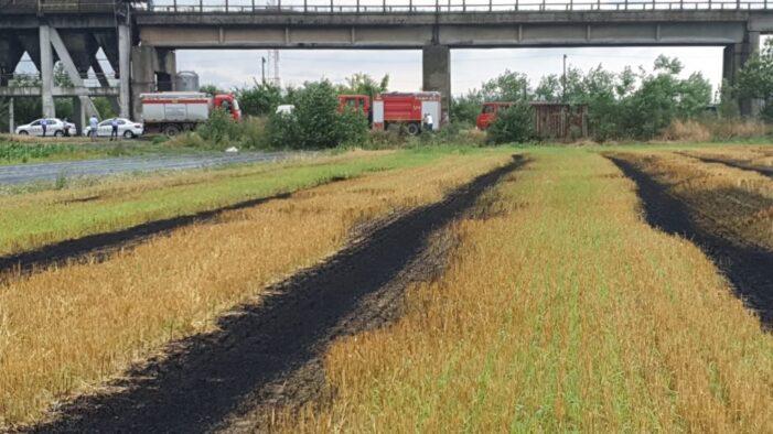 Incendiu de vegetatie uscata in Halmeu (Foto)
