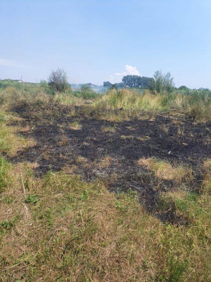 Incendiu de vegetatie uscata (Foto)