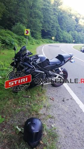 Motociclist din Satu Mare, ranit. S-a izbit de un copac (Foto)