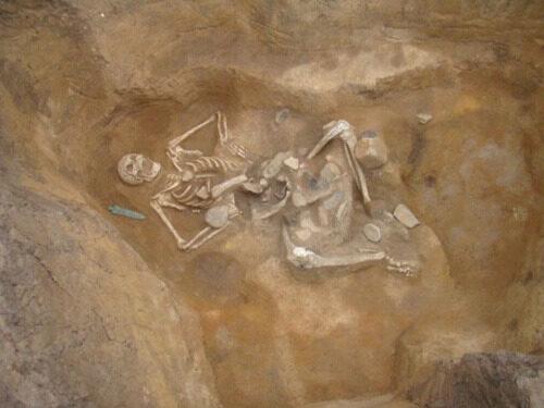 Le Goliath de Carei et le mystère des gigantesques squelettes découverts sur le territoire roumain