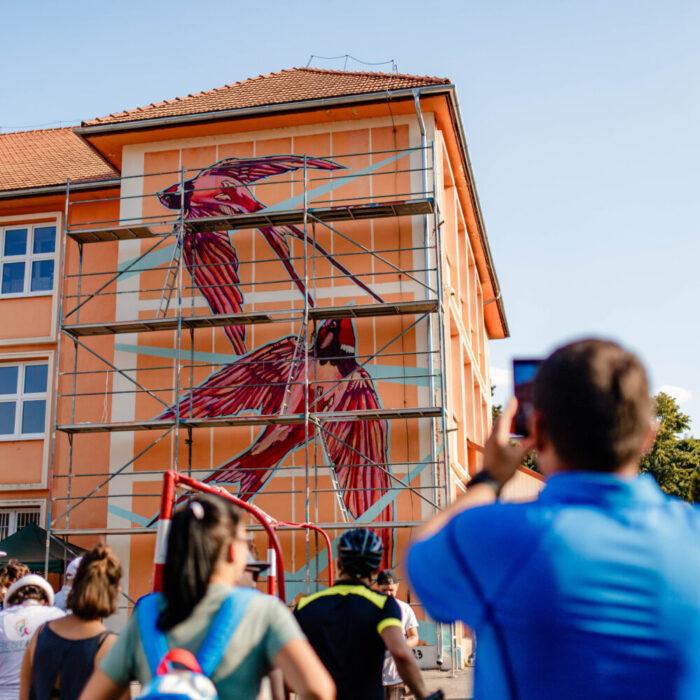 Festivalul RESTART a adus cu succes arta urbană la Satu Mare !