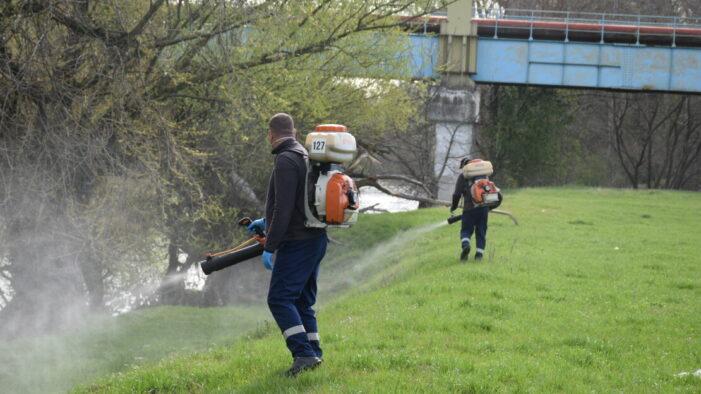 Dezinsectie pana vineri, in municipiul Satu Mare