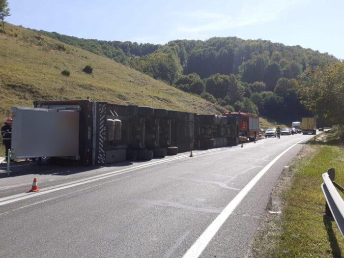 Un camion plin cu porci s-a rasturnat (Foto)